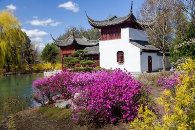 Japanese garden in Montreal